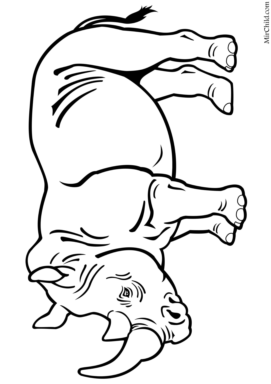 Раскраска - Дикие животные - Носорог | MirChild